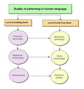 Duality of Patterning, from http://www.uni-due.de/DI/REV_Linguistics.htm